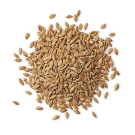 白い背景の上の有機の一粒小麦種子のヒープ