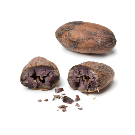 Whole and halved cocoa bean close up isolated on white background