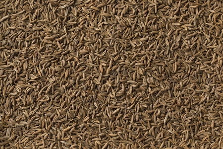Dried organic Caraway seeds full frame