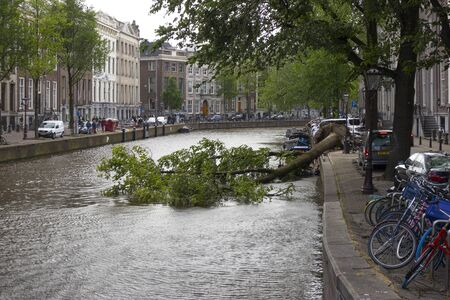 Amsterdam, Holland - June 09, 2019: Blown down tree in the canal after a heavy storm Editorial