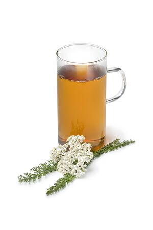 Fresh Common yarrow flowers and a cup of tea isolated on white background Фото со стока