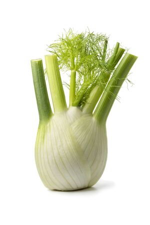Fresh raw organic fennel bulb isolated on white background Stok Fotoğraf - 132034259