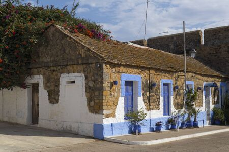 Facade of a traditional house with pot plants and flowering bougainville in the medina of Asilah, Morocco