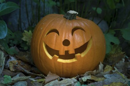 Orange kind smiling Halloween pumpkin in the garden in twilight Фото со стока