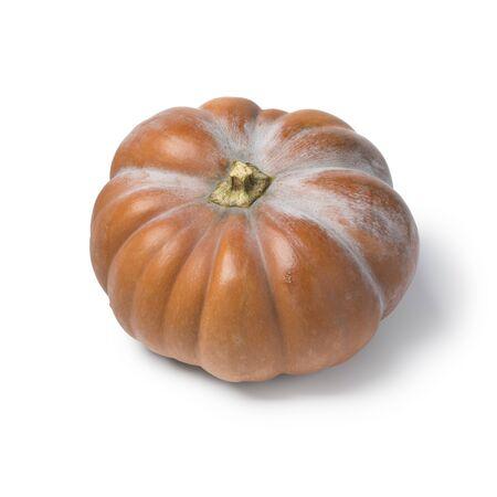 Single whole fresh Orange Moschata pumpkin isolated on white background
