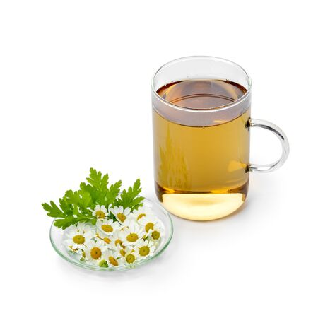 Glass of herbal tea with fresh Feverfew flowers on a dish isolated on white background