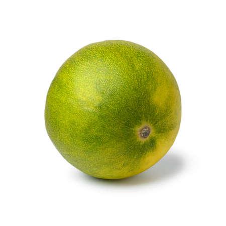 Single fresh whole limelon fruit isolated on white background