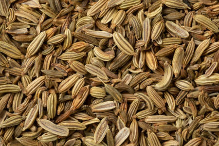 Dried fennel seed close up full frame