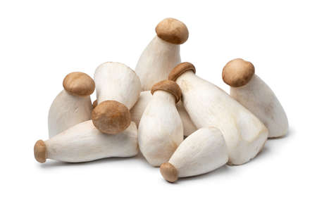 Heap of fresh raw mini king oyster mushrooms isolated on white background