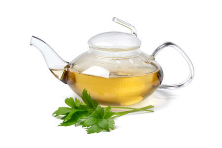 Glass teapot with lovage tea and a fresh twig of lovage in front isolated on white background