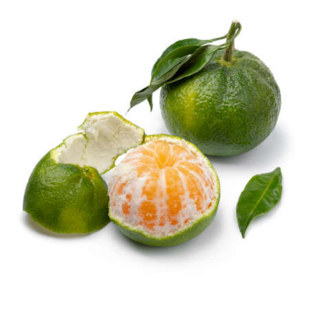 Green mandarin and a peeled one isolated on white background close up