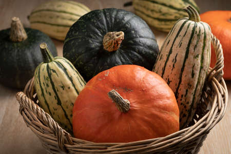 Variety of different pumpkins in autumn in a basket close up