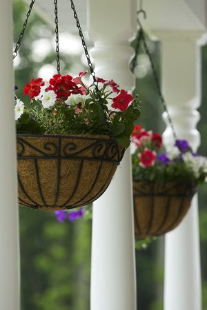 rafters: Two hanging baskets outside home hanging from rafters.