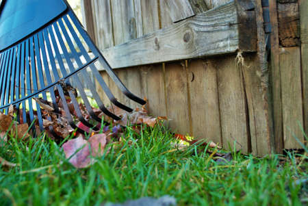 Pile of leaves and a rake leaning against a fence fall background Banco de Imagens