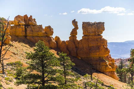 hoodoos: Landscape of red hoodoos in Bryce Canyon on a trail Stock Photo