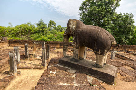 ancient elephant: Elephant in ancient Angkor Wat temple, Cambodia