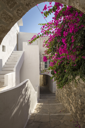 cycladic: Idyllic way through cycladic white houses and pink flowers on Naxos, Greece