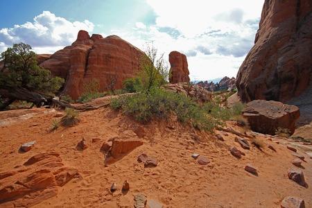the devils garden: Devils Garden Trail in the desert of Arches National Park, USA