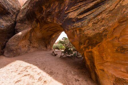 arcos de piedra: T�nel de piedra en el Parque Nacional Arches, Utah, EE.UU.