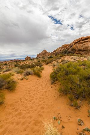 the devils garden: Devils Garden Trail in the desert, Arches National Park, Utah