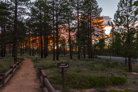 campground: On way to sunset campground, Bryce Canyon at sunset