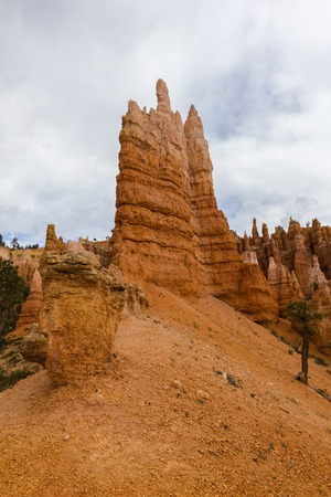 hoodoo: Orange hoodoo rocks in Bryce Canyon, Utah, USA Stock Photo