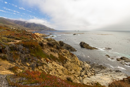 natural bridge state park: On the shore of Highway No. 1 in California, USA