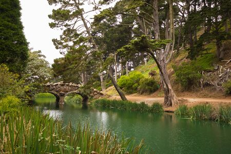 san francisco bay: Idyllic Golden Gate Park with bridge over lake, San Francisco