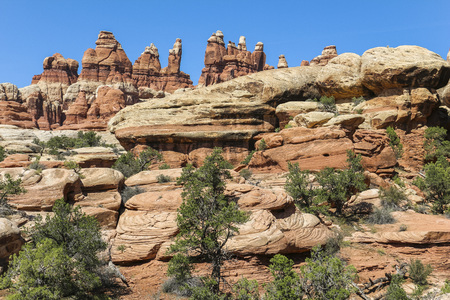 Landscape on the Chesler Park trail in Needles District, Canyonlands