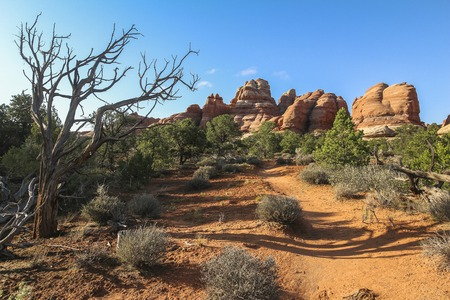 Beautiful red rocks landscape in Chesler park in needles district