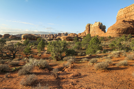 Chesler Park trail in needles district after sunrise, Canyonlands