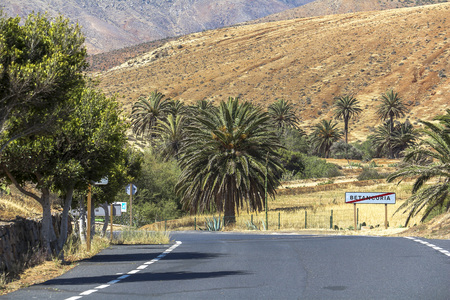 Road near Betancuria on rural Fuerteventura island