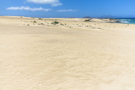 Endless and wide sand dunes, Dunas de Corralejo, Fuerteventura