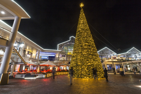 Christmas tree at V A Waterfront in Cape Town