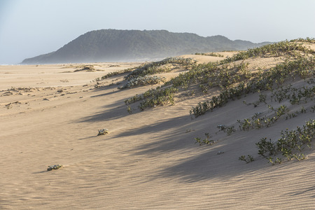 Beautiful sand dunes in St. Lucia in South Africa