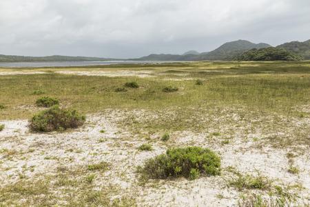 St. Lucia wetlands park, beautiful nature Stock Photo