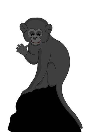 jumping monkeys: monkey child on isolated backgroundrnrn Stock Photo