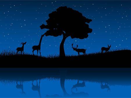 wild animals near tree and lake Stock Photo - 3300475