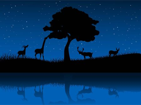wild animals near tree and lake Stock Photo - 3300475