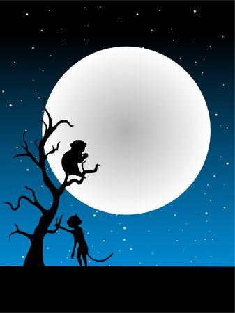 jumping monkeys: monkeys on tree in light