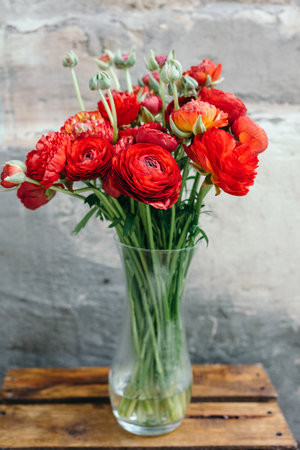 Bouquet of red ranunculus flowers in vase on a rustic background. Close up