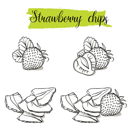 Hand drawn sketch style Strawberry set. Single, group fruits, strawberry chips, slices. Organic food, vector doodle illustrations collection isolated on white background. Stock Illustratie