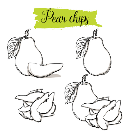 Hand drawn sketch style Pear set. Single, group fruits, pear chips, slices. Organic food, vector doodle illustrations collection isolated on white background.