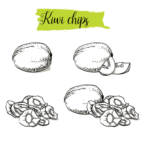 Hand drawn sketch style Kiwi set. Single, group fruits, kiwi chips, slices. Organic food, vector doodle illustrations collection isolated on white background.
