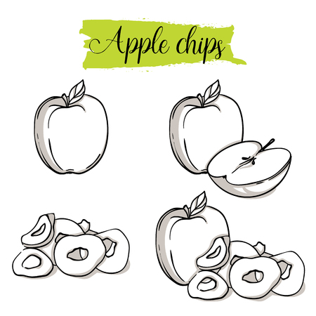 Hand drawn sketch style Apple set. Single, group fruits, apple chips, slices. Organic food, vector doodle illustrations collection isolated on white background. Stock Illustratie