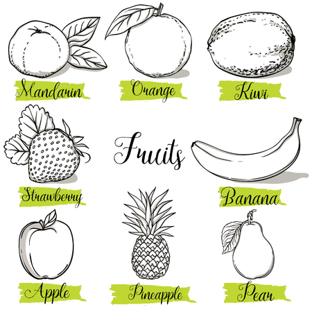 Hand drawn sketch style fruits and berries. Mandarin, orange, kiwi, strawberry, banana, apple, pineapple and pear. Organic fruit with leaf, vector doodle illustrations collection isolated on white background.