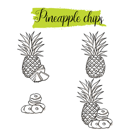Hand drawn sketch style Pineapple set. Single, group fruits, pineapple chips, slices. Organic food, vector doodle illustrations collection isolated on white background.