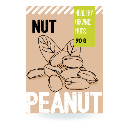 Beautiful vector hand drawn peanut organic nut. Template elements for packaging design. Modern illustrations isolated on white background.