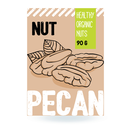 Beautiful vector hand drawn pecan organic nut. Template elements for packaging design. Modern illustrations isolated on white background. Stock Illustratie