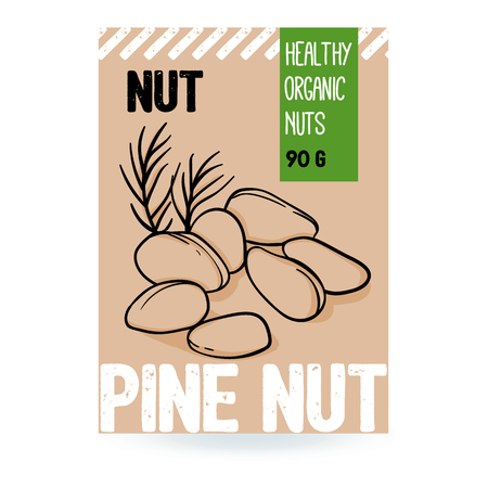 Beautiful vector hand drawn pine organic nut. Template elements for packaging design. Modern illustrations isolated on white background.